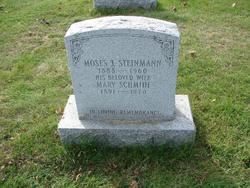 Moses J Steinmann