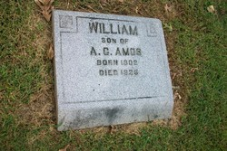 William Amos