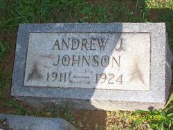 Andrew J Johnson