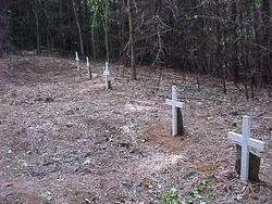 Jacks Creek Poorhouse Cemetery
