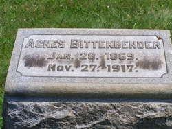 Agnes Sarah Jane <i>Rothrock</i> Bittenbender
