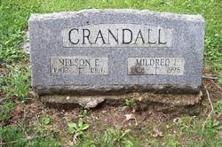 Nelson Edward Crandall