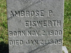 Ambrose P Eiswerth