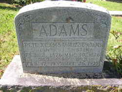 Annie Elizabeth Lizzie <i>Burns</i> Adams
