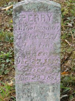 Perry Austin