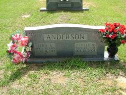 Estelle W Anderson
