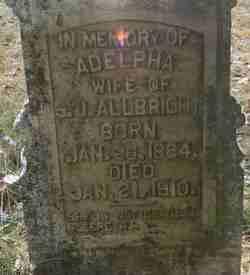 Adelpha <i>Moore</i> Allbright