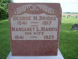George Mark Briggs