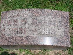 William S Briggs