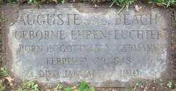 Auguste J C Beach