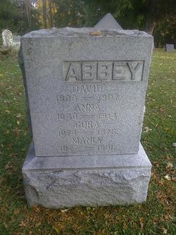 Rev David Abbey