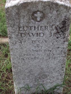 Luther A. David, Jr