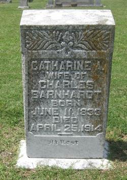 Catharine A Barnhardt