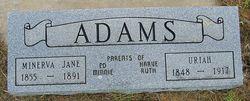 Uriah William Adams