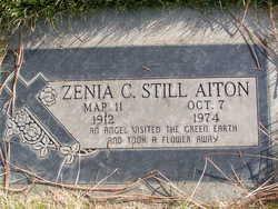Zenia C <i>Anderson Still</i> Aiton