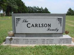 Alton A L Carlson