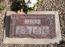Elaine Lloyd