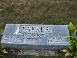 Theodore Bakker