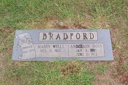 Mandy Wells Bradford