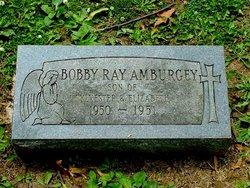 Bobby Ray Amburgey