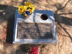 Walter V Allen