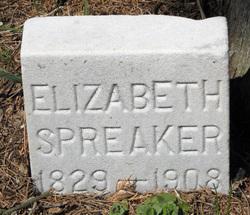 Elizabeth Spreaker