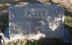 James Julius Alley