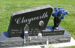 Diane L Clayworth