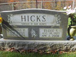 Thomas Profitt Hicks