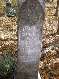 James J. Hankins