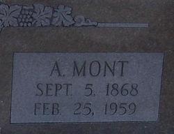 Arrie Mont Flippin