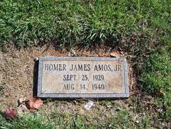 Homer James Amos, Jr