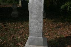 Anna E. Adamson