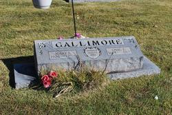 Carl E Gallimore