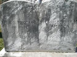 Lois Abigail Abby <i>Morgan</i> Amadon
