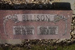 James Henry Ellison