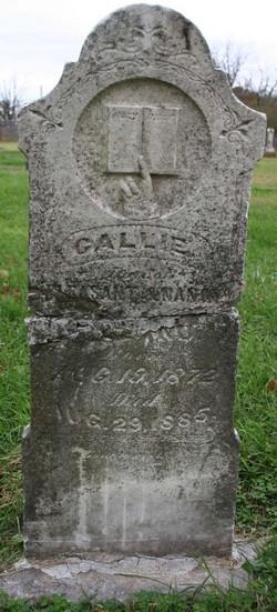 Callie Holland