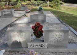 Martha Jane Opell <i>Wages</i> Adams