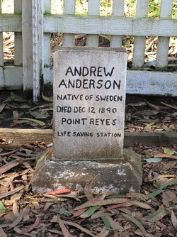 SMN Andrew Anderson