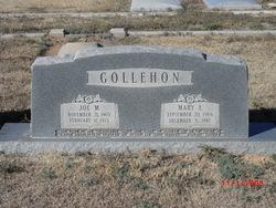 Mary E Gollehon