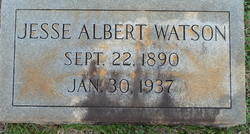 Jesse Albert Watson