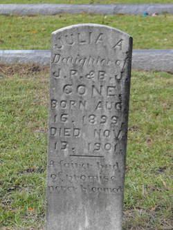Julia A. Cone