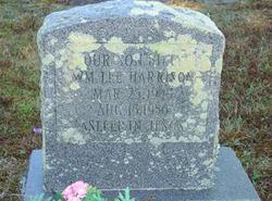 William Lee Billy Harrison