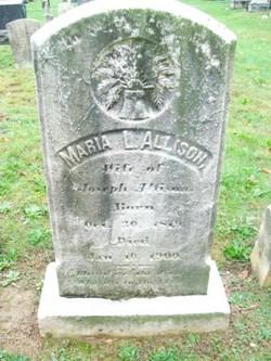 Maria L. Allison