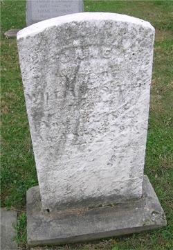 Lydia Jane <i>Calkins</i> Smith