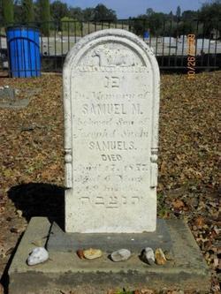 Samuel M. Samuels