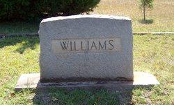 Sallie N Williams
