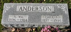 Cara E. <i>Robinson</i> Anderson