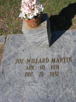 Joseph Willard Martin