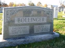 Rosa Rosella <i>Logel</i> Bollinger